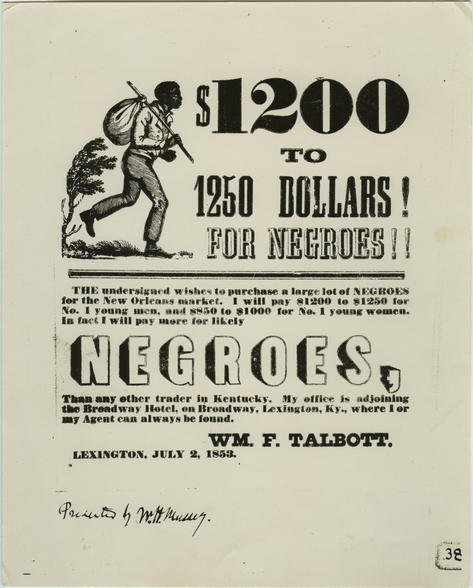 ancestry negroes for sale 68